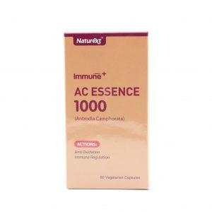 AC Essence 1000 1